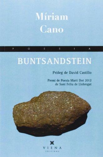Buntsandstein (Poesia, Band 173)