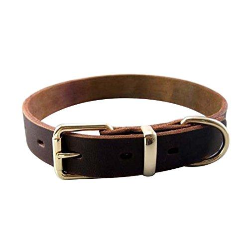 Basic Hundehalsband Vollrindleder Retriever Halsband Verstellbares Halskette Hundeband Antiquität Echtleder Hundehalsung Martingal für Kleine Mittlere Große Hunde Dog Collar (S) (Antiquitäten Halskette)