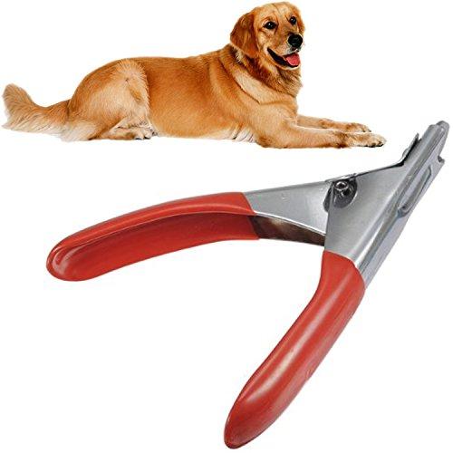 In acciaio inox Pet Toe artiglio Clippers tagliaunghie Grooming Forbici taglio Trimmer per cani gatti cane gatto accessori accessorio rosso