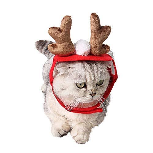 Hat Weihnachtsgeschenke für Katze, Kalolary Weihnachten Pet Geweih Hut für Hund Katzen Party Kleidung, Weihnachten Halloween Cosplays Zubehör Urlaub Kostümzubehör ()