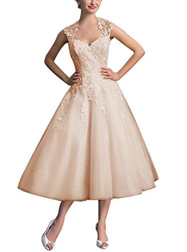 Find Dress Elégant Robe Vintage d'Audrey Hepburn Année 50s Rockabilly Swing pour fête Noel Noble Robe de Gala Soirée Grande Taille pour Femme Ronde Dentelle Qualité Champagne