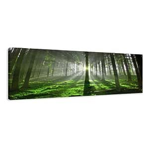 visario leinwandbilder 5706 bild auf leinwand wald 120 x 40 cm. Black Bedroom Furniture Sets. Home Design Ideas