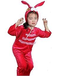 Disfraces de animales para niños Disfraz de pijama con capucha y unisex (Conejo rojo,