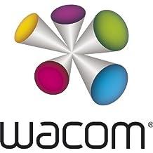 Wacom Bamboo Stylus Feel Plumas suaves para CS-300/400 - Negro