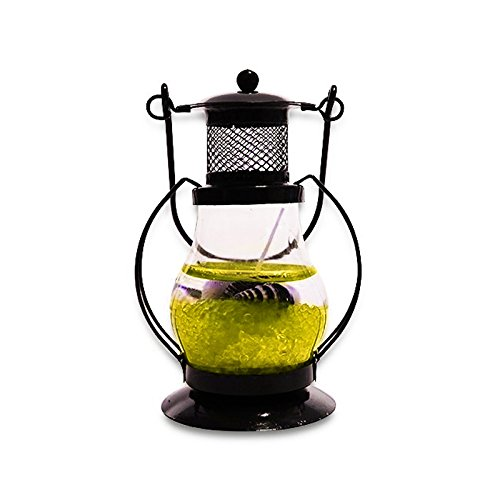 Dizionario Gel Glass Candle Lantern Scented Set of 1  available at amazon for Rs.199
