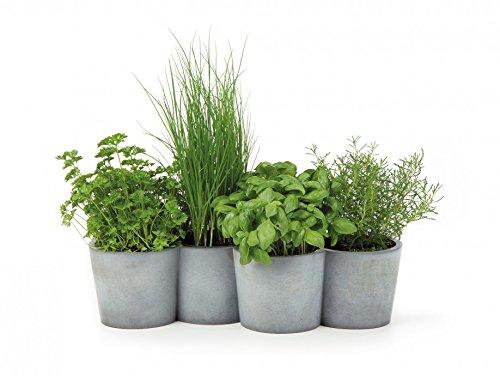 konstantin-slawinski-potpot-macetero-de-cemento-para-hierbas-macetas-decorativas-de-hormigon-485-x-1