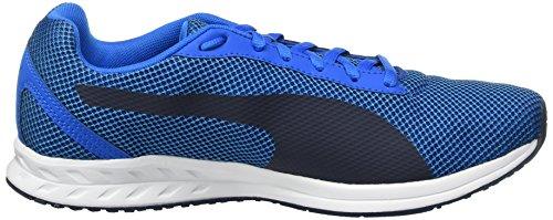 Puma Burst Mesh, Chaussures de Running Compétition Homme Bleu - Blau (Electric Blue lemonade-PEACOAT-PEACOAT 03)