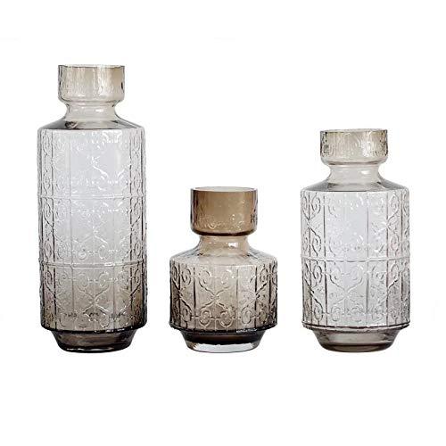 RENYAYA Kreatives Geprägtes Glas Hydroponischen Madrid Vase, Wohnzimmer, Wohndekoration Handwerk-Kaffeefarbe,S Madrid Vase