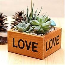 Aplus Shop in legno quadrato succulente vaso per piante da giardino, da vaso di supporto interno verde artificiale in vaso pianta espositore per decorazioni per la festa della mamma regali