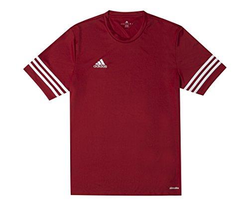 adidas Entrada 14 JSY, Camiseta para hombre, Rojo (University Red/White), L, F50485
