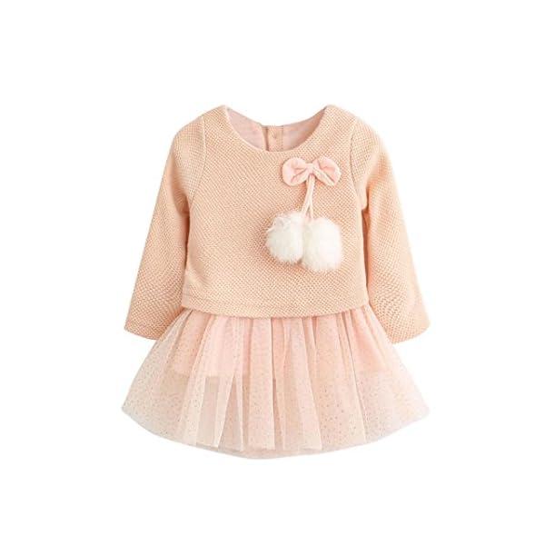 Ropa bebé Recién Bebé Niñas Manga Larga Tutú Princesa Vestido 1