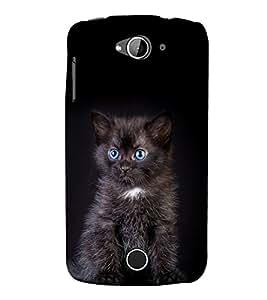 printtech Cute Cat Kitten Back Case Cover for Acer Liquid Z530