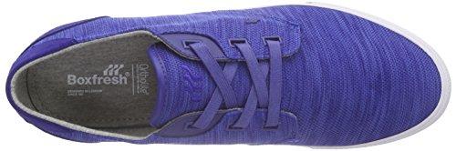 Boxfresh Stern Flk Mesh/Sde, Baskets Basses homme Bleu - Blau (BOLD BLUE/GREY)