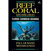 [(Reef Coral Identification : Florida Caribbean Bahamas)] [By (author) Paul Humann ] published on (November, 2013)