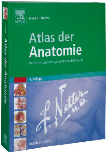 Netter - Atlas der Anatomie par Lorenz/Borruat