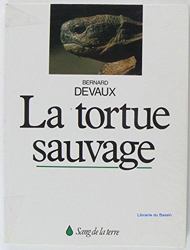 La tortue sauvage des Maures ou tortue d'Hermann