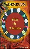 Vademecum Sales de Schüssler (Spanish Edition)