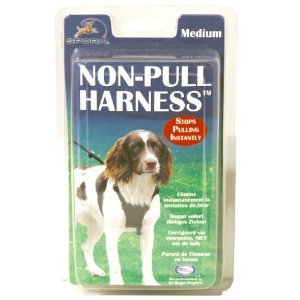 Non Pull Dog Harness (Med) by Company of Animals