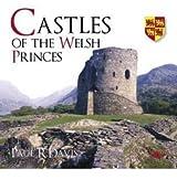 [(Castles of the Welsh Princes)] [Author: Paul R. Davis] published on (December, 2007)