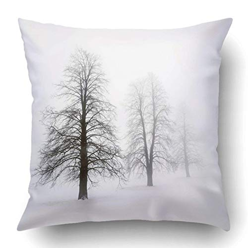 quanzhouxuhuixiefu Throw Pillow Covers Black Bare Foggy Moody Winter Scene Leafless Trees White Branch Cloudy Cold Few Fog Frosty Polyester 18 X 18 Inch Square Hidden Zipper Decorative Pillowcase (Moody Blues Halloween)