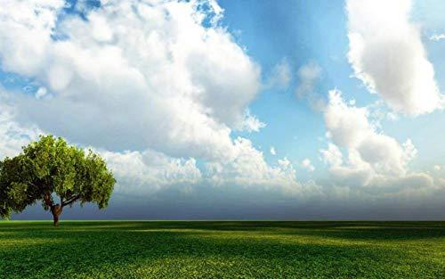 CCEEBDTO Puzzle 1000 Stück 3D DIY Erwachsene Spiele Blauer Himmel, Weiße Wolken, Prärie Holzpuzzle Tier Obst Sammlung Landschaft Kinder Alte Leute Geschenke Dekoration Puzzle Spiel 75X50 cm - Wolken Sammlung