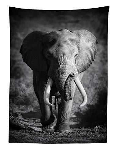 ABAKUHAUS Elefante Tapiz de Pared y Cubrecama Suave, Elefante Majestuoso Acercándose Foto Hábitat Exótico Salvaje Mamífero Estampa Safari, Objeto Decorativo Lavable, 110 x 150 cm, Gris