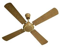 Havells Woodster 1200mm Ceiling Fan (Oak)
