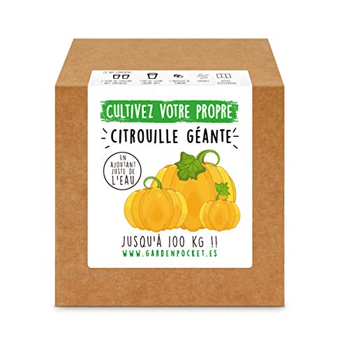 Garden Pocket - Kit de Culture de CITROUILLE GÉANTE