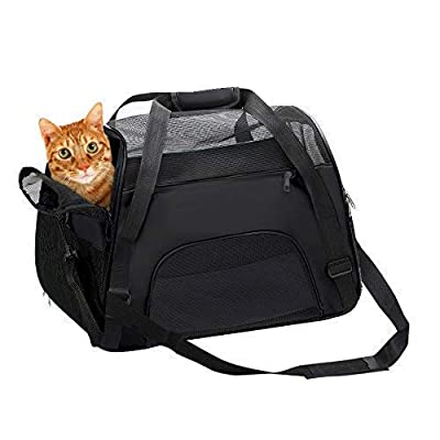 Soft Sided Pet Carriers