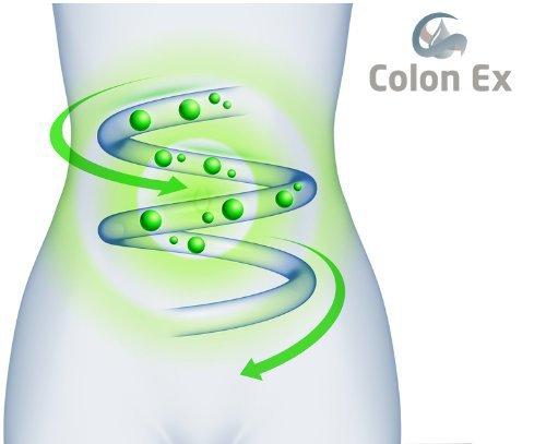 Colon Ex, 90 Kapseln Premiumqualität mit Flohsamenschalen und Magnesium, 100 Prozent natürlich und sanft, 1er Pack (1 x 81 g)