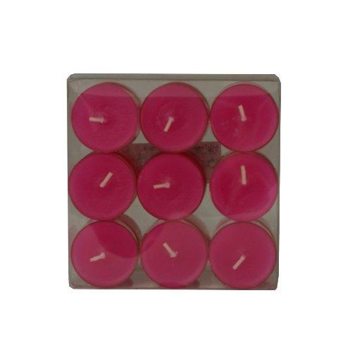 Wenzel-Kerzen 31-1522-18-35 Teelichte, pink in Kunststoffhülle, ca. 4 h Brenndauer, Pack a 18 Stück