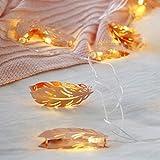 TAOtTAO Lamp Lamp string string LED Zimmer Dekoration Licht Romantische Hochzeit Rose Goldene Feder Schlafzimmer Licht (B)