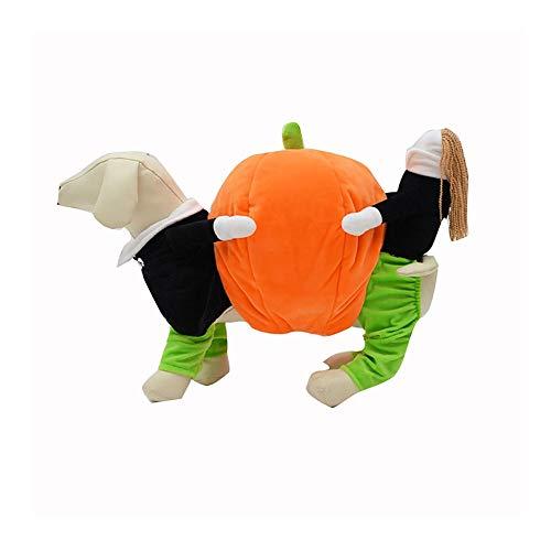 Anzug Einen Kostüm Tragen - Haustier Kostüm Hund Halloween Kostüm Bekleidung Kleidung tragen Kürbis lustige Welpen Cosplay Outfit Anzug Kürbis Stil für kleine mittlere Hunde und Katzen,XL