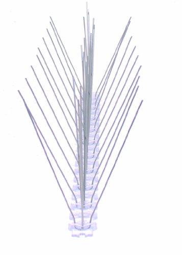 6-reihige Spikes Edelstahl Halten Sie Die Ganze Zeit Fit Taubenabwehr Taubenschutz 300 Mm Schutzbreite 1 St