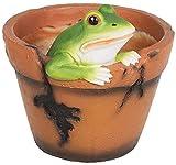 Mui Garten Deko Figur Blumentopf Frosch Frösche Übertopf Pflanzentopf Pflanzgefäß Garden Decor