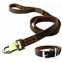 WYXIN Medium Large Collar de perro Cadena de tracción con collar de cuero, para Labrador Golden Retriever Pastor Alemán Husky Outdoor Walking Training Jugando , B