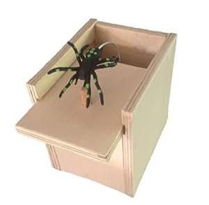 Scare Box Scare Box Hilarious Scare Box Spider Prank