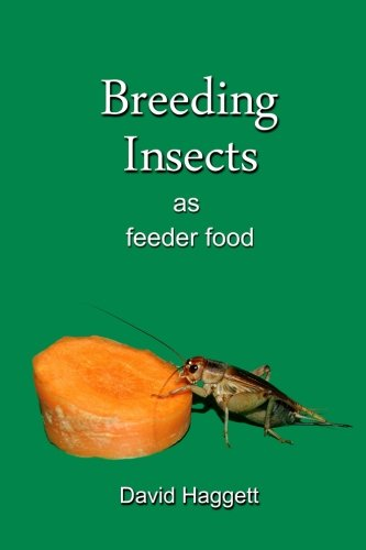 Breeding Insects as feeder food
