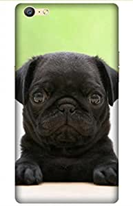 iessential puppy Designer Printed Back Case Cover for OPPO A57