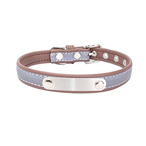 Hundehalsband Lichtreflektierendes Material Edelstahl Eisen Patch Engravable Geschirr und Leinen (Material Patch Eisen)