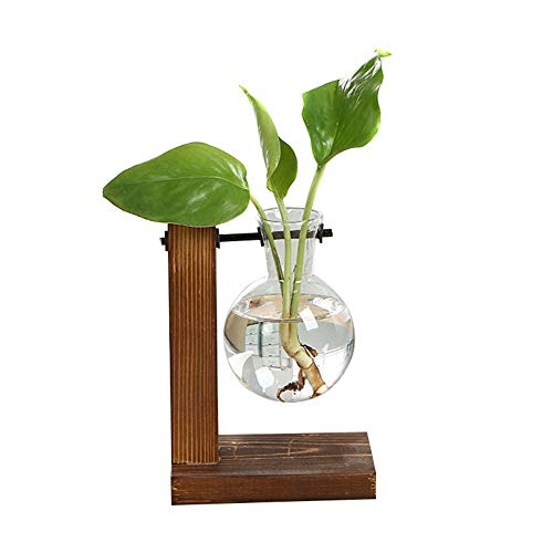 Leobtain Hydroponische Vase Vintage Desktop Pflanzer Vase Glas Pflanzer Vase Desktop hängende Glas Hydroponik Pflanzen Schreibtisch Garten Zuhause Büro Schule Hochzeit Dekor mit Retro Holzständer - Mat-board-speicher