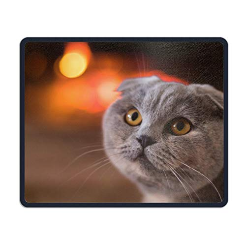 meniony Palette Animal Cats Mouse Pad Funny Awesome Customized, Rectangle -
