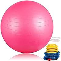 DAMIGRAM Ballon de Gymnastique 65cm, Ballon Suisse pour La Forme Physique, Balle de Pilates-Ballon Gym pour l'exercice, Professionnel Anti-Eclatement Anti-éclatement Robuste avec Pompe