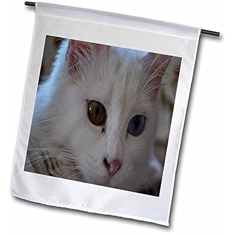 3dRose fl _ 52678_ 1bandera de Jardín, 12por 18pulgadas, Van Cat portraitvan Kedisi, Turkish Van Cat, color blanco vertical de gatos, mascotas, lindo, ojos azules,