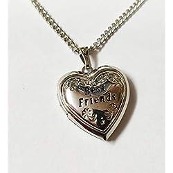 Meilleurs Amis Love Médaillon Cadeau En Boîte Pendentif , Anniversaire, Noël, N'importe Quel Occasion Cadeau