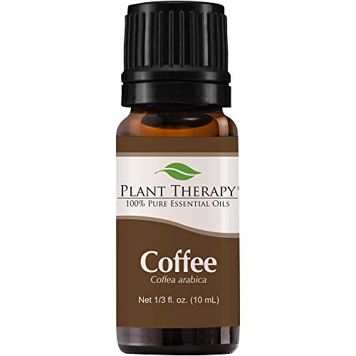 Coffee Essential Oil. 10 ml (1/3 oz). 100% Pure, Undiluted, Therapeutic Grade. by Plant Therapy Essential Oils - Rock Rose Dropper
