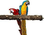 مسند للوقوف 20 سم وتضارب المخالب والبراثن بتصميم عصا خشبية وحطب للطيور والببغاء، لعبة محمولة