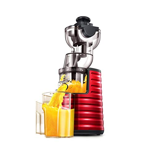 QQB & Máquina exprimidora Lenta, licuadora de Frutas y Verduras con Motor silencioso de Doble Etapa...
