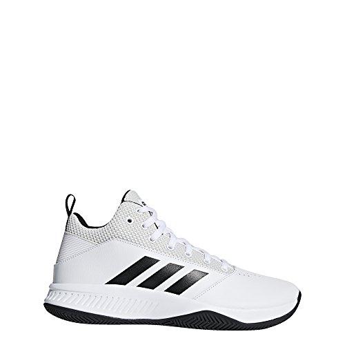 info for e57cc 2ea55 adidas CF Ilation 2.0, Chaussures de Gymnastique Homme
