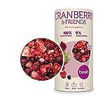 Buah | Gourmet Gefriergetrocknete Cranberry & Friends| 138g | Knuspriger Snack | Bester Geschmack für Smoothie und Müsli | Ohne Zusätze